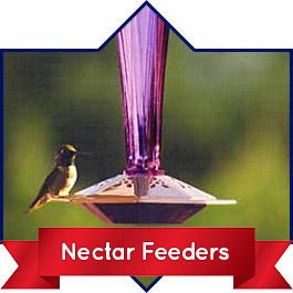 Shop Nectar Feeders