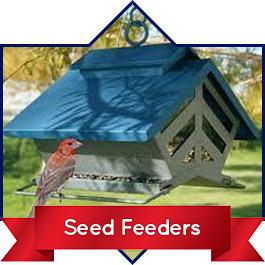 Shop Seed Feeders